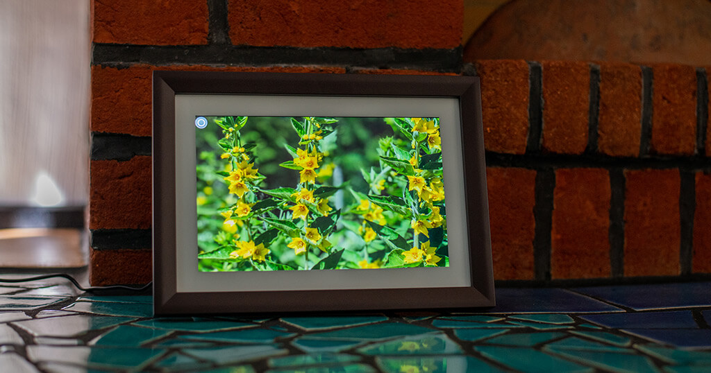My impression of the Dragon Touch Digital Picture Frame Classic 10 with touch screen, WiFi, and SD/USB 1