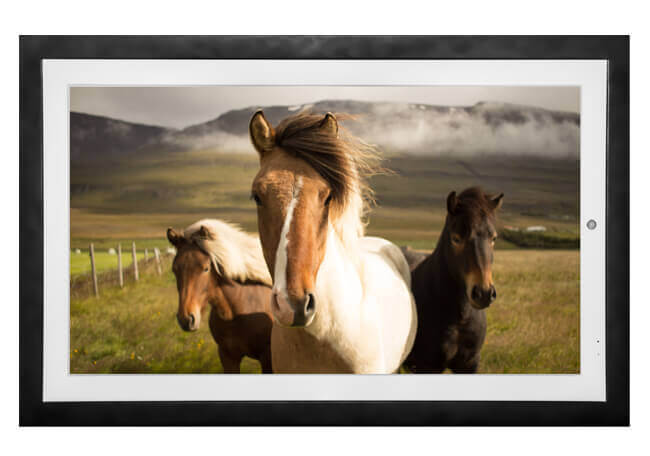 Recommended Digital Picture Frames 9